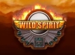 wild-spirit-slot