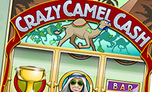 crazy-camel-cash-slot